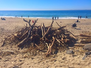 trash to treasure, debris, storm debris, aliso beach