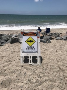 shark warning, shark warning sigh, shark sign, capo beach