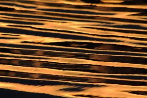Aliso Beach Golden Ripples.JPG